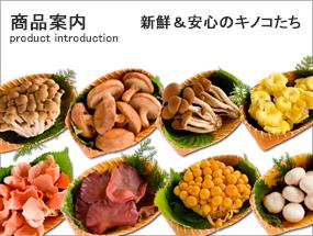 商品案内/業務用きのこの卸・仕入れ・通販&惣菜のことなら株式会社バイオコスモ