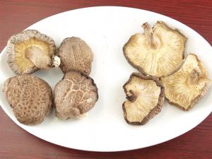 ②有機乾し椎茸の美味しい戻し方|有機ときのこ【第8話】