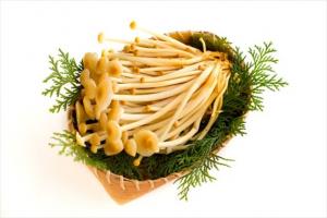 ②野菜炒めにあうきのこベスト3