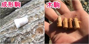 ④椎茸の有機と有機じゃない物ってどう違うの?|有機ときのこ【第11話】