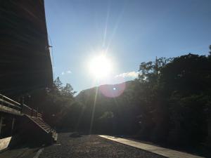 『夏』きのこ問屋の社長コラム